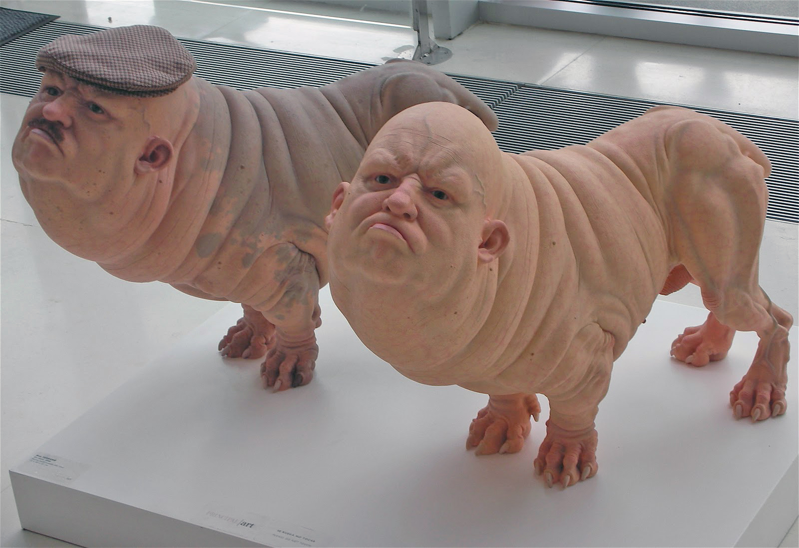 patricia piccinini materials and techniques A maryland man was sentenced to 20 years in federal prison for conspiring to provide material support and  the federal bureau of investigation's albuquerque.