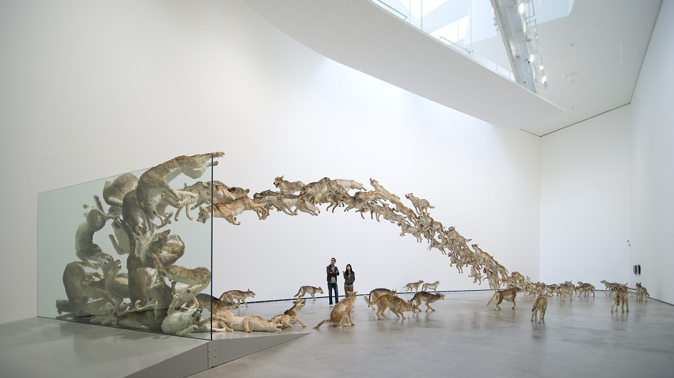 Cai Guo-Qiang was born in 1957 in Quanzhou City, Fujian Province, China, and lives and works in New York where he creates amazing sculptures. amazing sculptures Cai Guo-Qiang amazing sculptures in the best museums 01 cai guo qiang head on