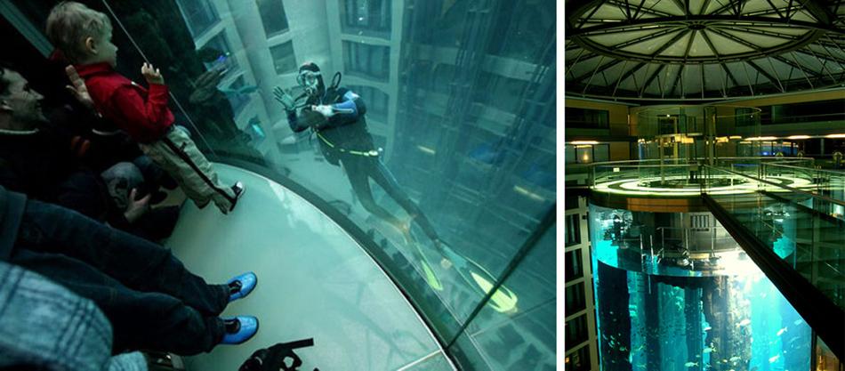 Radisson Blue Hotel - The AquaDom Aquarium  Radisson Blue Hotel – The AquaDom Aquarium 32