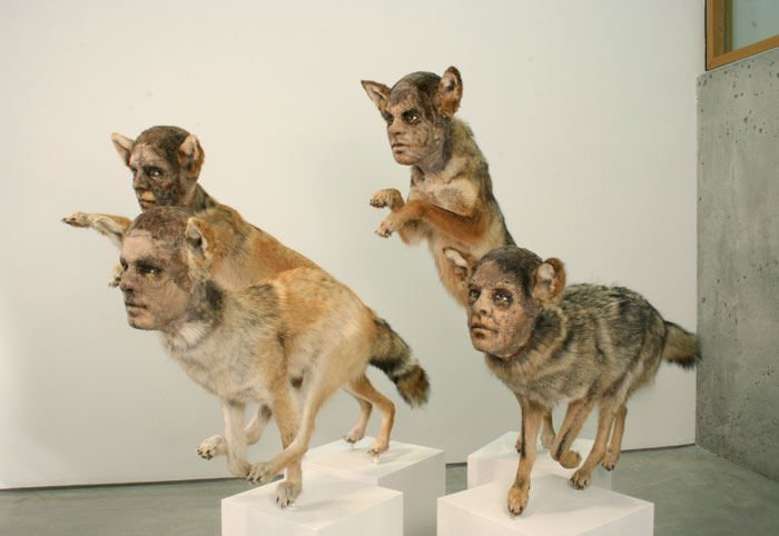 """""""This contemporary artist explores methods and materials that highlight illusionism of all forms to fool the viewers' eye.""""  Kate Clark contemporary animal sculptures Kate Clark contemporary animal sculptures artists i lobo you10"""