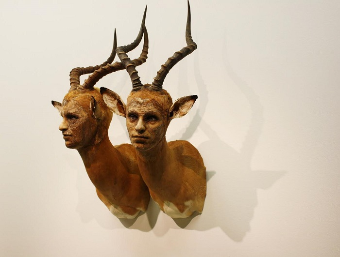 """""""This contemporary artist explores methods and materials that highlight illusionism of all forms to fool the viewers' eye.""""  Kate Clark contemporary animal sculptures Kate Clark contemporary animal sculptures artists i lobo you7"""