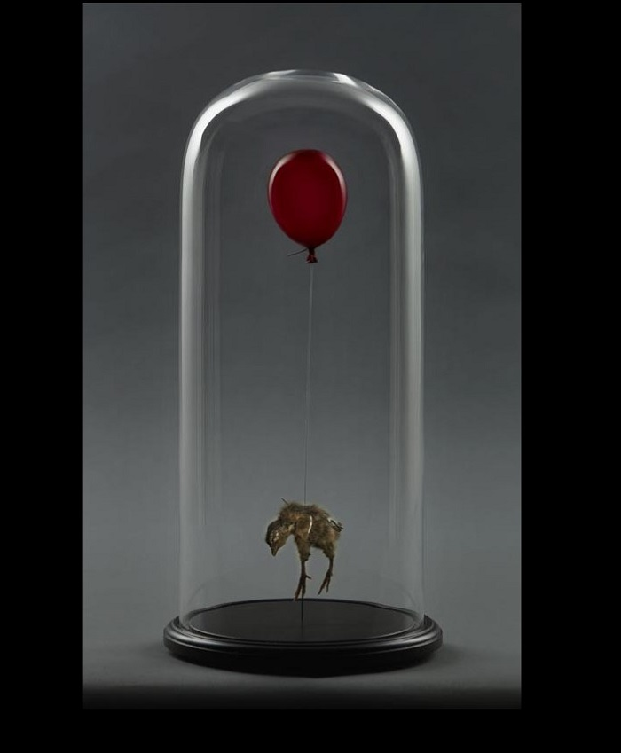 """""""Morgan is an artist that creates animal sculptures that creates an unique impact in people's reaction to dead and life.""""  Polly Morgan taxidermy sculptures Polly Morgan taxidermy sculptures artists i lobo you"""