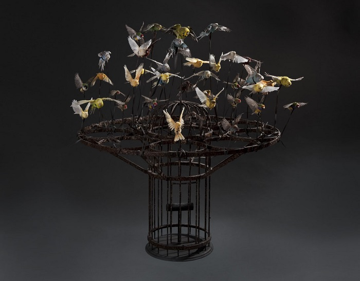 """""""Morgan is an artist that creates animal sculptures that creates an unique impact in people's reaction to dead and life.""""  Polly Morgan taxidermy sculptures Polly Morgan taxidermy sculptures artists i lobo you11"""