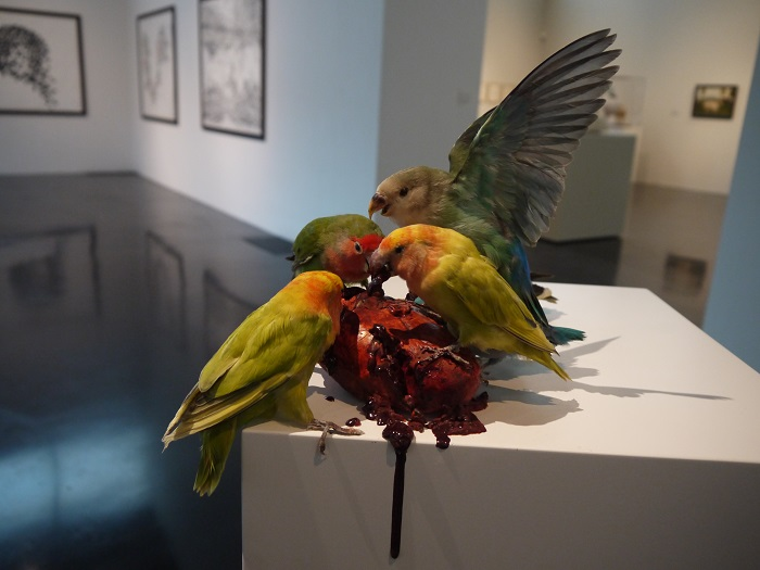 """""""Morgan is an artist that creates animal sculptures that creates an unique impact in people's reaction to dead and life.""""  Polly Morgan taxidermy sculptures Polly Morgan taxidermy sculptures artists i lobo you19"""