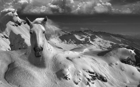 """With unlimited imagination and consummate skill Thomas Barbey combines wildly disparate imagery into one seamlessly beautiful piece of art.""  Surrealism photography by Thomas Barbèy Surrealism photography by Thomas Barb  y artists I Lobo you6 480x300"