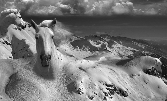 Surrealism Photography By Thomas Barb 232 Y I Lobo You