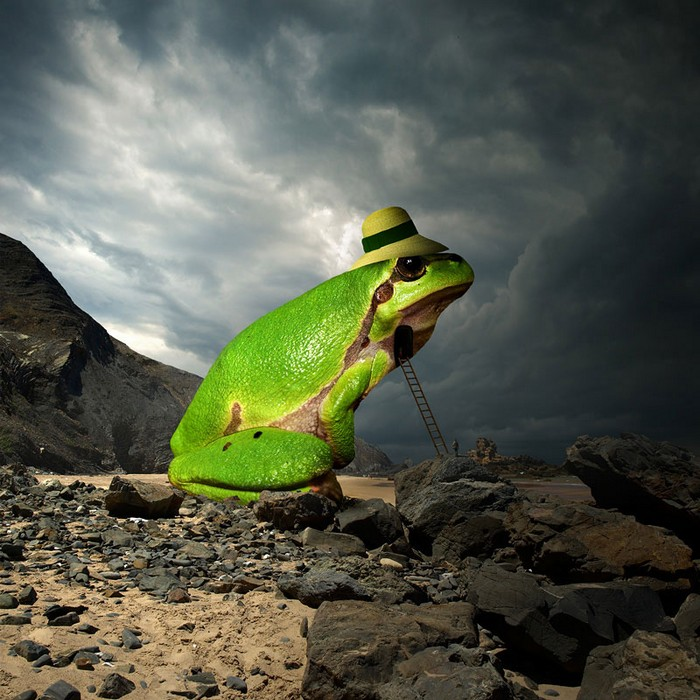 Surreal photo manipulations by Tomasz Zaczeniuk- artists I Lobo you7