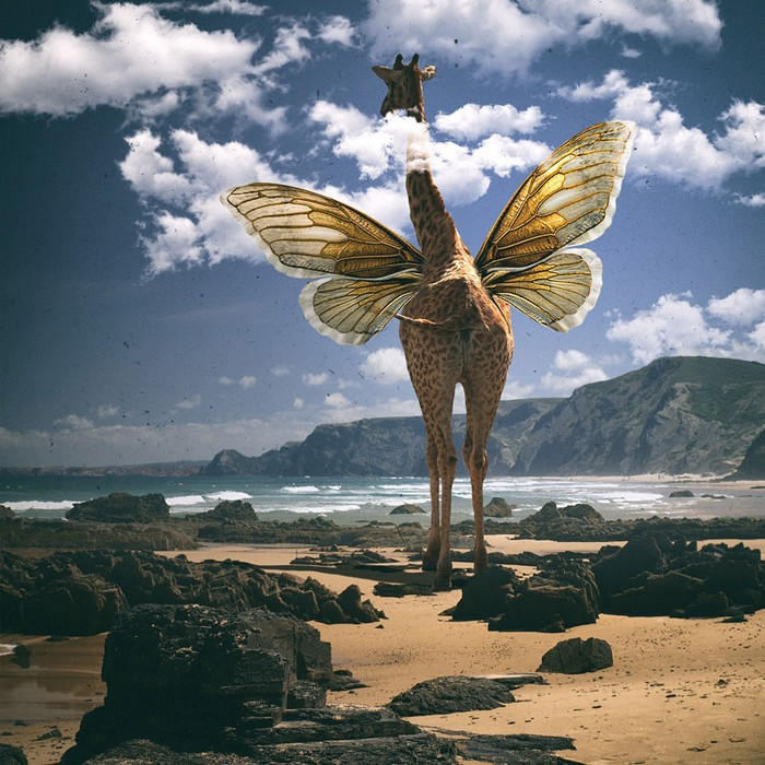 Surreal photo manipulations by Tomasz Zaczeniuk- artists I Lobo you8
