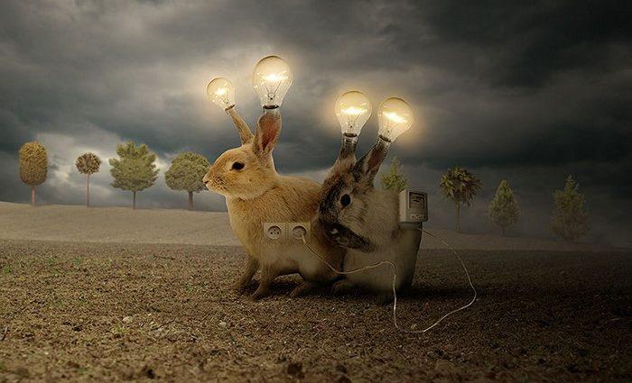 Tomasz Zaczeniuk is a Polish photographer dedicated to surreal photo manipulations that are impressive.