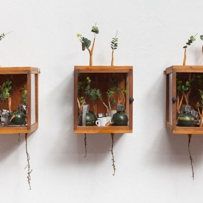 Camille Kachani develops an inventive process of possibilities related to the process of transformation of nature. Basically, she creates art with trunks.