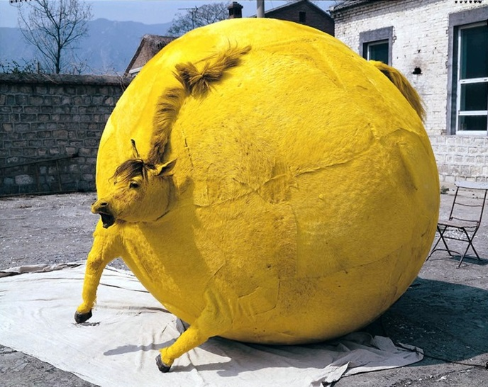 The Beijing-based artist Yang Maoyuan constructs controversial spherical sculptures like if they were balloon animals. Balloon animals Balloon animals by Yang Maoyuan Balloon animals by Yang Maoyuan artists I Lobo you4
