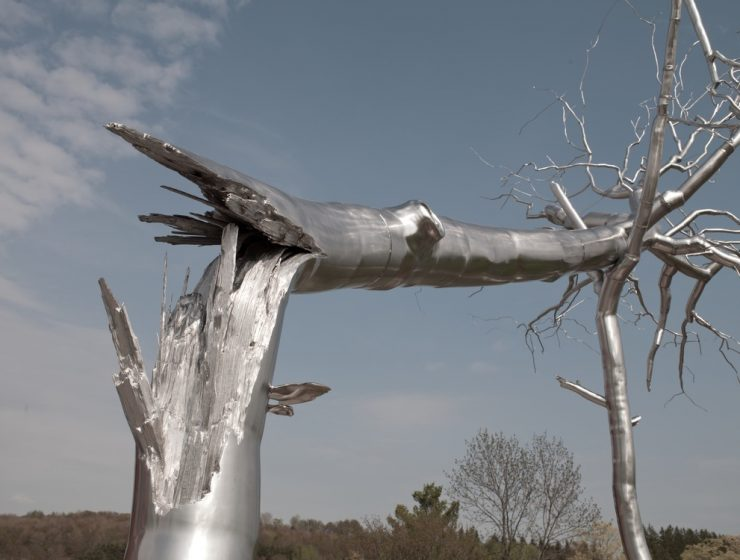 Roxy Paine is an artist that lives and works in New York, and gets inspired in Nature to create massive tree sculptures.