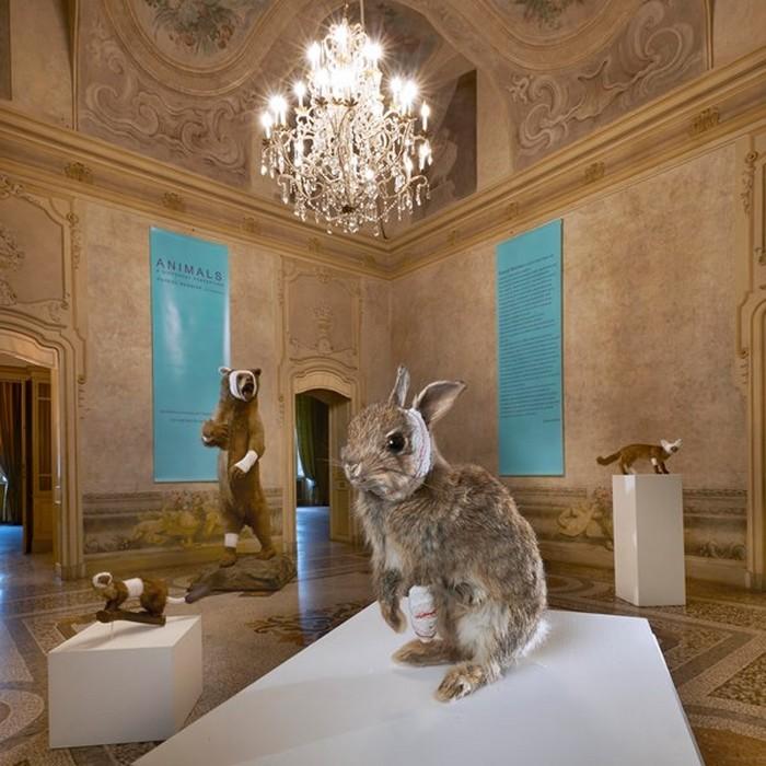 animal sculptures Contemporary animal sculptures by Pascal Bernier Contemporary animal sculptures by Pascal Bernier artists I Lobo you1