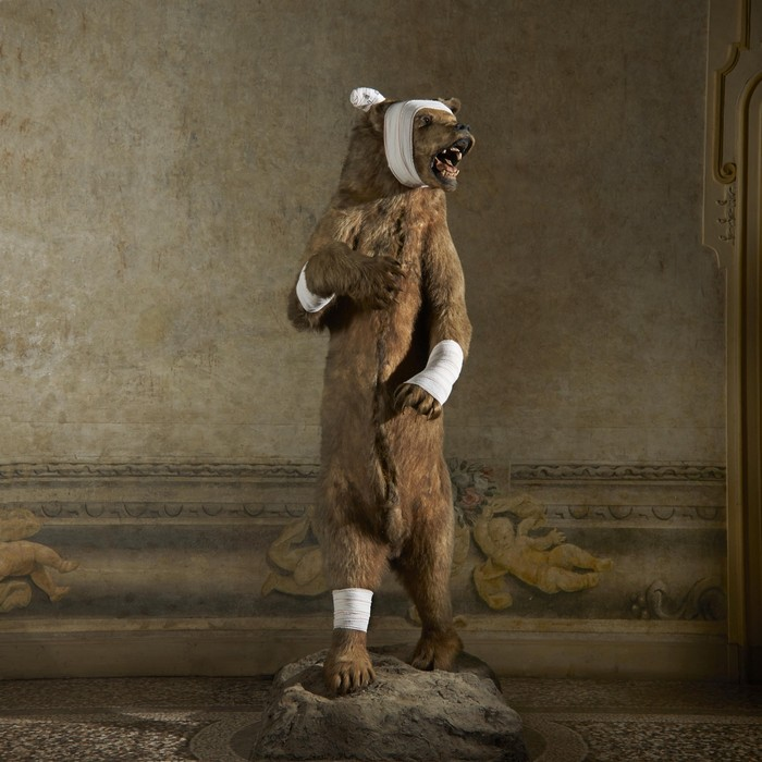 animal sculptures Contemporary animal sculptures by Pascal Bernier Contemporary animal sculptures by Pascal Bernier artists I Lobo you2