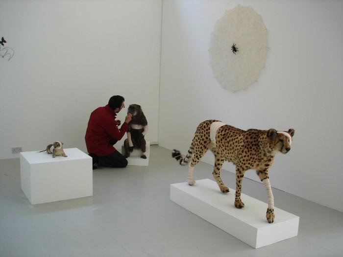 animal sculptures Contemporary animal sculptures by Pascal Bernier Contemporary animal sculptures by Pascal Bernier artists I Lobo you20