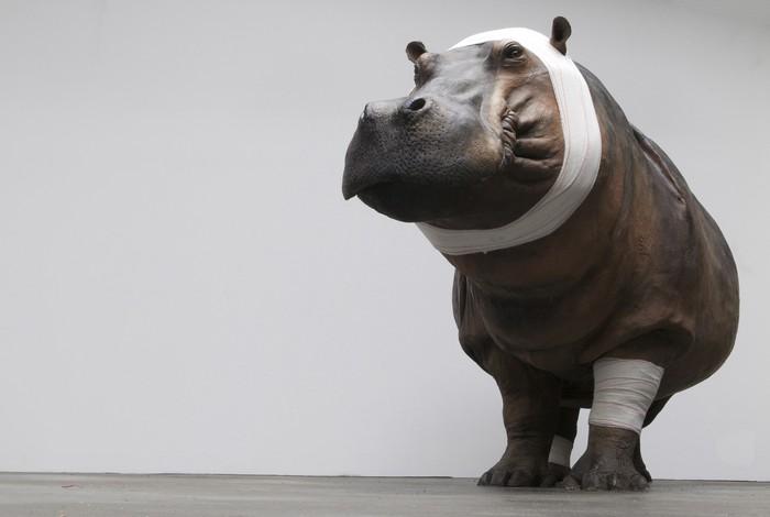 animal sculptures Contemporary animal sculptures by Pascal Bernier Contemporary animal sculptures by Pascal Bernier artists I Lobo you3
