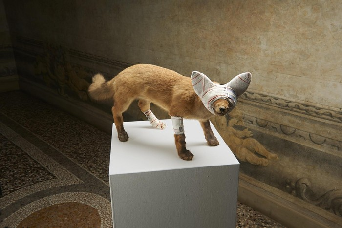 animal sculptures Contemporary animal sculptures by Pascal Bernier Contemporary animal sculptures by Pascal Bernier artists I Lobo you5