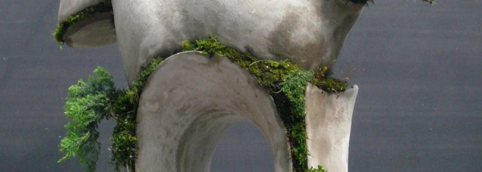 Robert Cannon is an American artist whose contemporary sculptures of concrete and moss are calling attention.